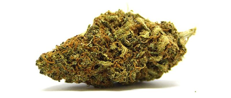 cannabistargettopoli